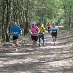 Trailrun Leudal 2013. Foto\\\'s Pieter